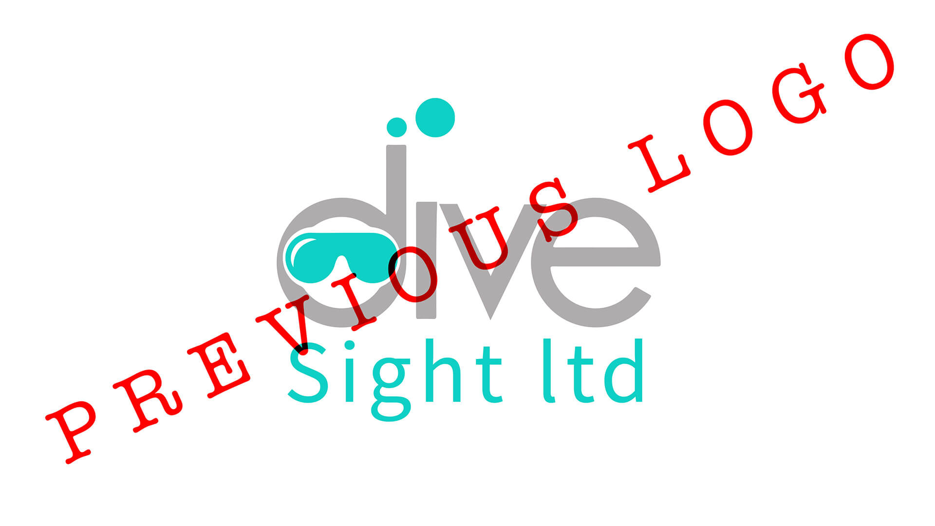 divesight 11