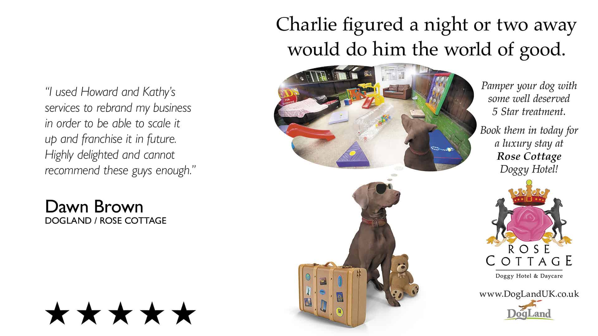 Reviews Page Image 7